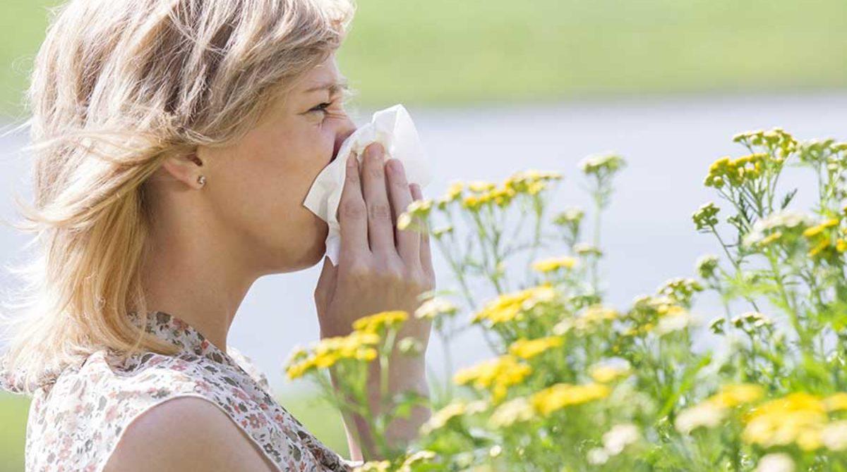 A blueprint of treating seasonal allergies