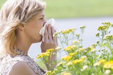 A blueprint of treating seasonal allergies