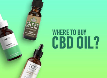 A Beginner's User Manual for Your Key Questions About CBD