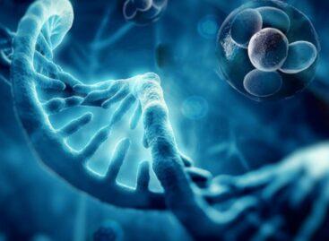 Why You Should Opt for Regenerative Medicine